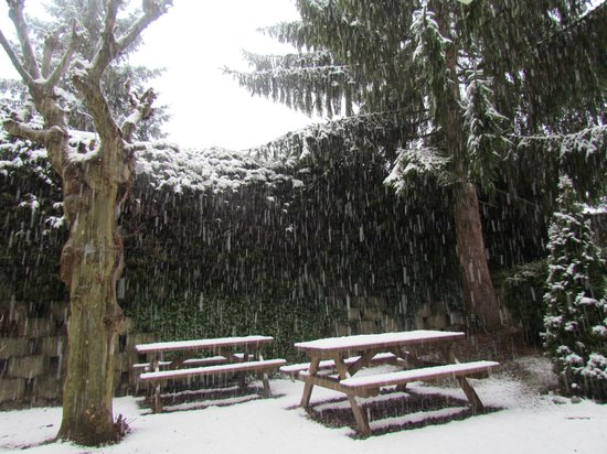Domaine du Val Joly : Jardin