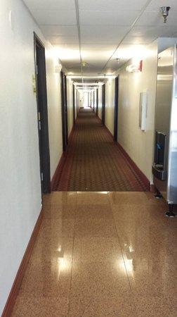 Super 8 Belleville : Hallway