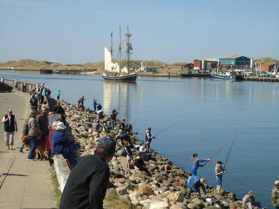 Bjerregaard Camping: Hvide Sande harbour