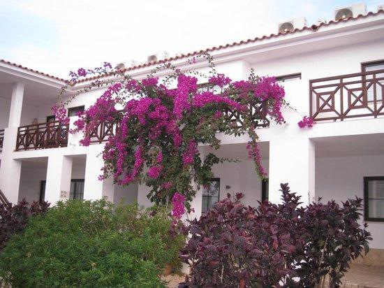 Melia Tortuga Beach Resort & Spa: Hotel