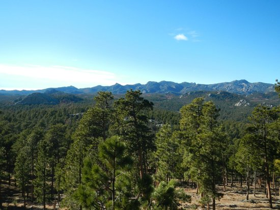 Custer State Park: At one of the scenic stops