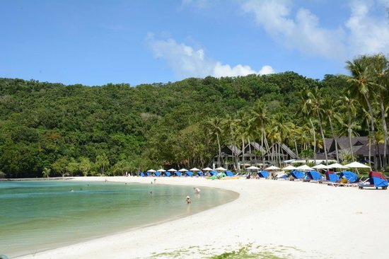 Palau Pacific Resort: Excellent beach (very calm water)