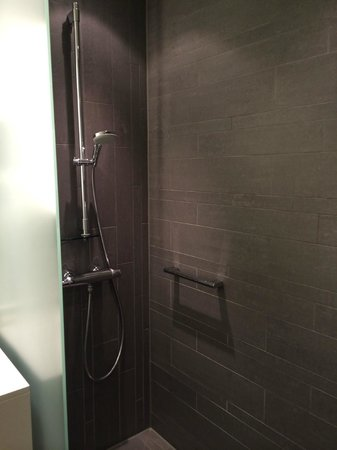 Radisson Blu Waterfront Hotel: Shower