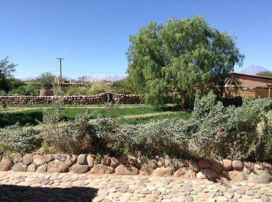 Altiplanico Atacama: Hotelgelände mit Anden im Hintergrund