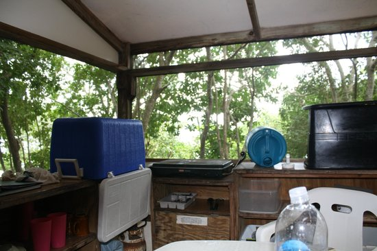 Concordia Eco-Resort : inside tent cabin