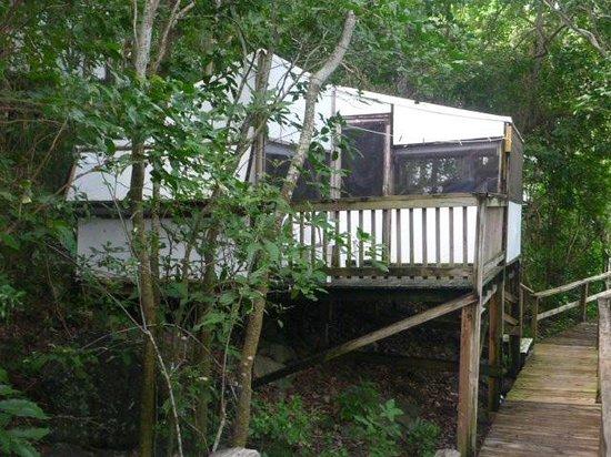 Concordia Eco-Resort : cabin