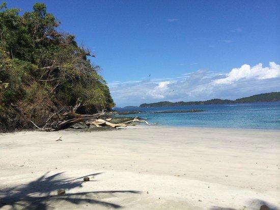 Hotel Bocas del Mar: Ausflugsfoto: Traumstrand auf der Insel Pargo