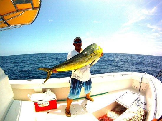 Port Canaveral fishing charter: Mahi Mahi