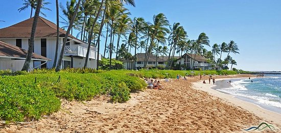 Kiahuna Plantation Resort: Poipu Beach in front of Kiahuna Plantation