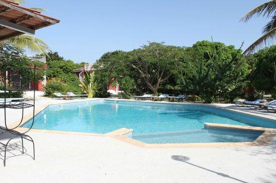 Domaine de la Mangrove : La piscine du domaine