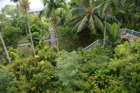 Yap Pacific Dive Resort: View of the garden from our room
