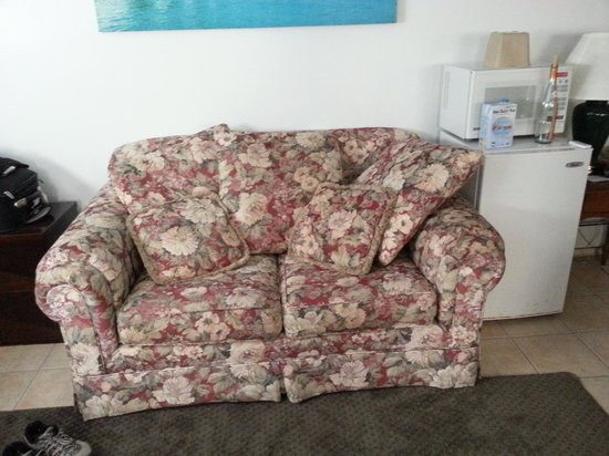 Green Dolphin Motel: floral couch