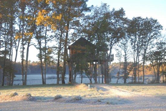 Cabanes Perchées dans les Arbres : Cabane Domme en hiver