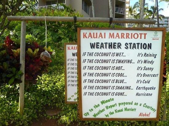 Kaua'i Marriott Resort: Very funny weather station