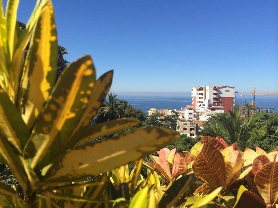 Casa Cupula: View of Beach