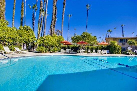 San Diego RV Resort : San Diego RV Pool Area