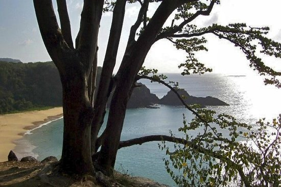 Baia do Sancho: Sancho - F. Noronha.