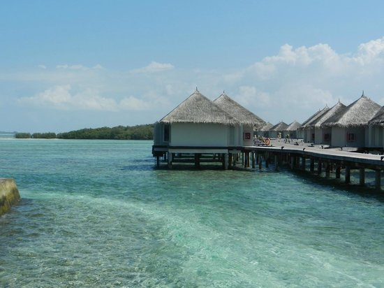 view from overwater bungalow picture of cinnamon. Black Bedroom Furniture Sets. Home Design Ideas