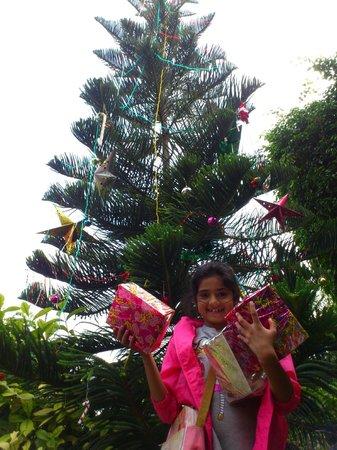 Club Mahindra Fort Kumbhalgarh: Christmas Gifts... (Empty ;) )