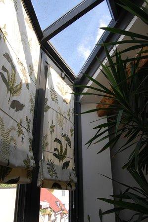 Suite Vigentina : le finestre panoramiche a 180°