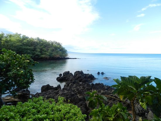 Spencer Beach Park : Small Snorkelling Bay To The South