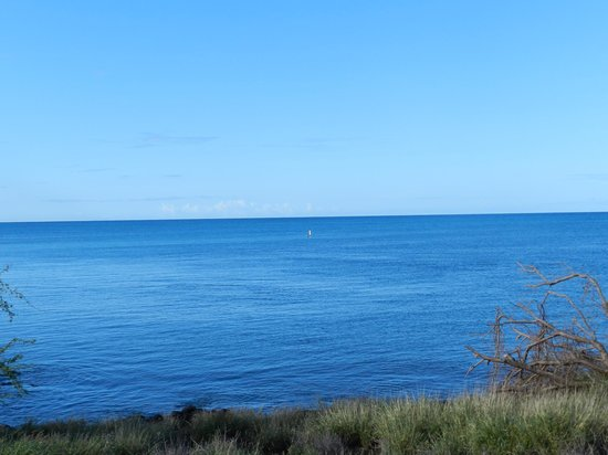 Spencer Beach Park : Paddle Boarding Near The Small Offshore Reef Area