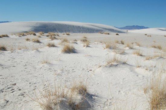 White Sands National Monument: The white sands