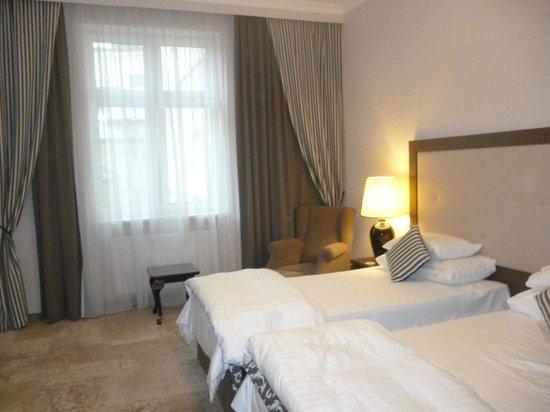 Metropolitan Boutique Hotel : Room