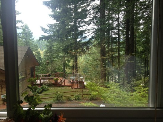 The Roaring River Bed & Breakfast: View from the Bear Room
