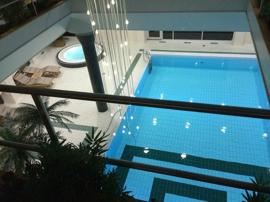 Hotel Okura Amsterdam: Pool