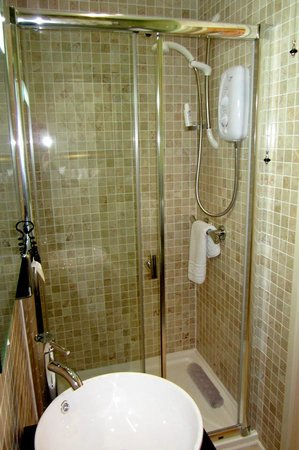 "Bosanneth Hotel: En suite shower in the ""Garden"" room"