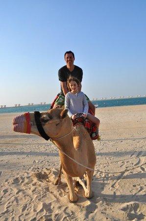 JA Jebel Ali Beach Hotel: Camel rides on the beach