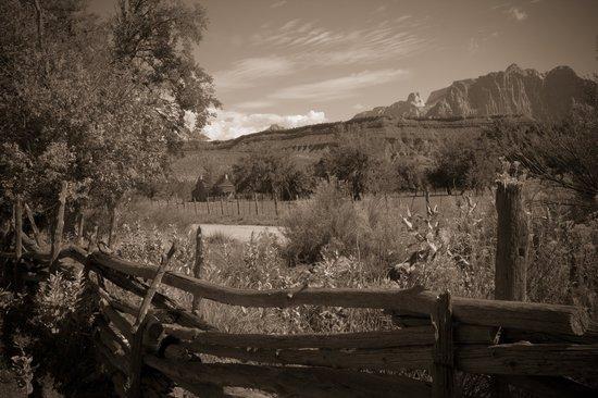 View at grafton ghosttown