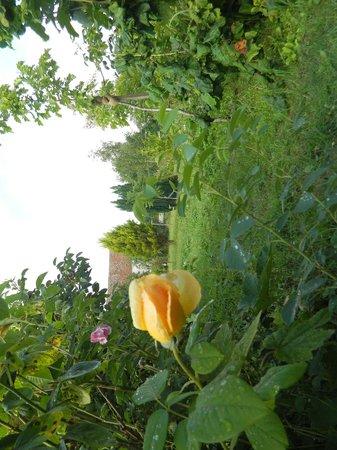 Le Relais De Libreval: Le jardin