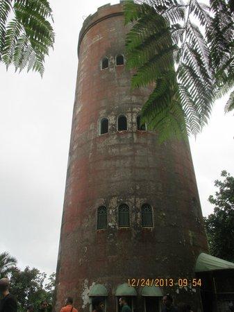 Yokahu Kayak Trips, Inc. : Yokahu Tower