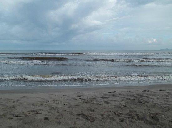 Palma Real Beach Resort & Villas: plage