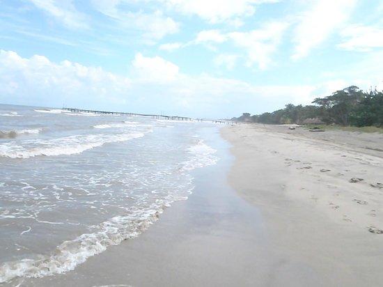 Palma Real Beach Resort & Villas : plage