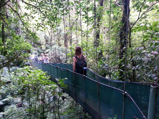 Desafio Adventure Company: Hanging Bridge