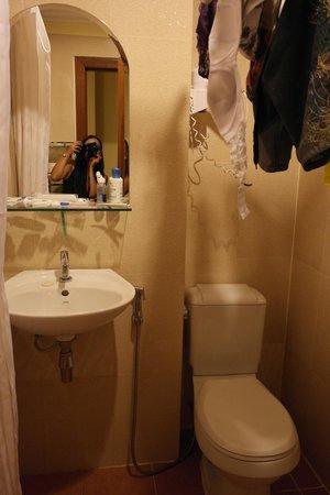 MotherHome Inn: sink and toilet