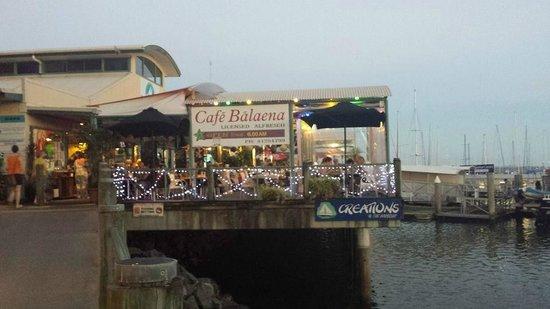 Cafe Balaena