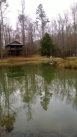 Cavender Creek Cabins Resort: The pond near some of the cabins