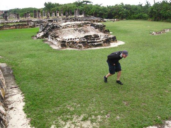 Ruines El Rey (Zona Arqueologica El Rey) : spotted an iguana under the ruins