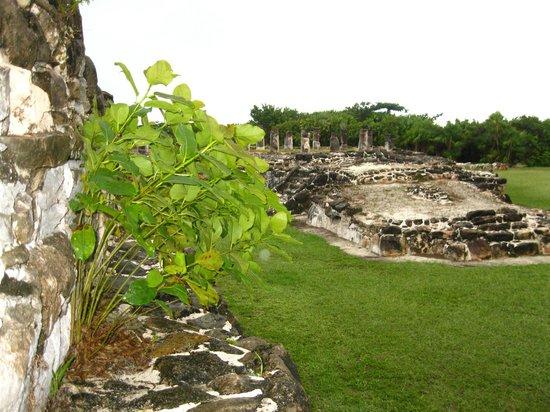 Ruines El Rey (Zona Arqueologica El Rey) : ruins