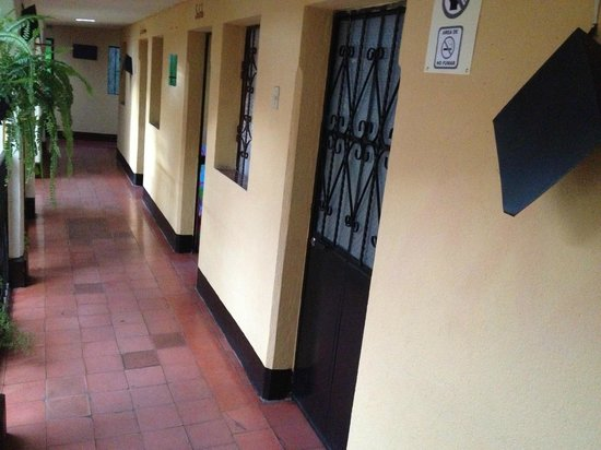 Hostel La Quinta : Corredor