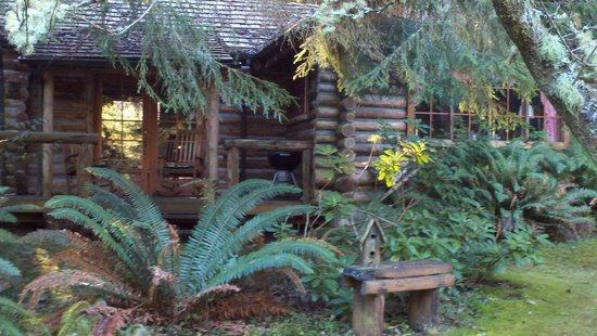 Guest House Log Cottages: View of the cabin from the pond