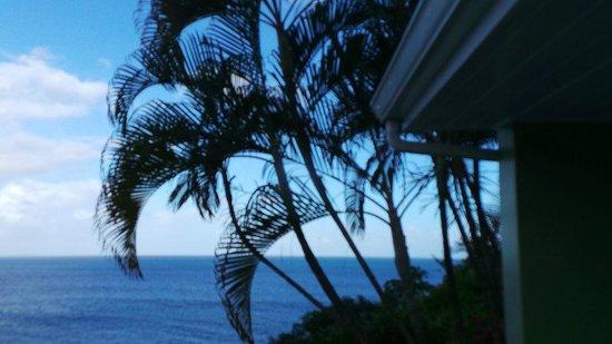 Sandals Regency La Toc Golf Resort and Spa: Never get sick of this