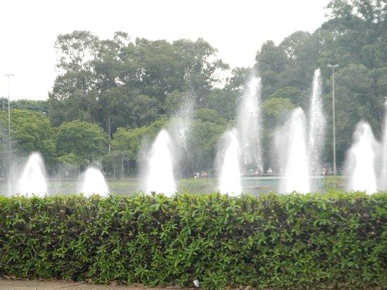 Parque do Ibirapuera: 이비라 뿌에라