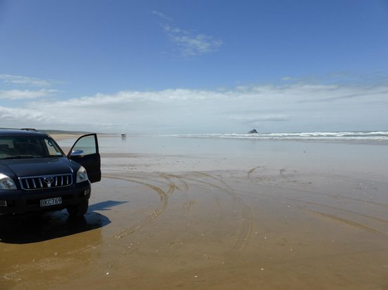 Paradise 4X4 VIP Personalised Day Tours: On the 90 Mile Beach
