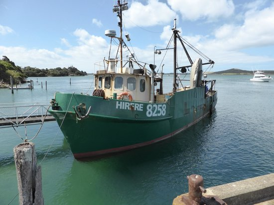 Paradise 4X4 VIP Personalised Day Tours: A fishing harbour on one of the side trips