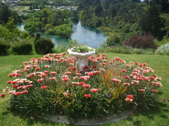 Riverview B & B Taupo : Garden at side of Deck